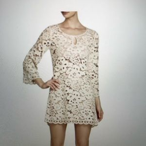 BCBG Tianya Crochet Dress with liner